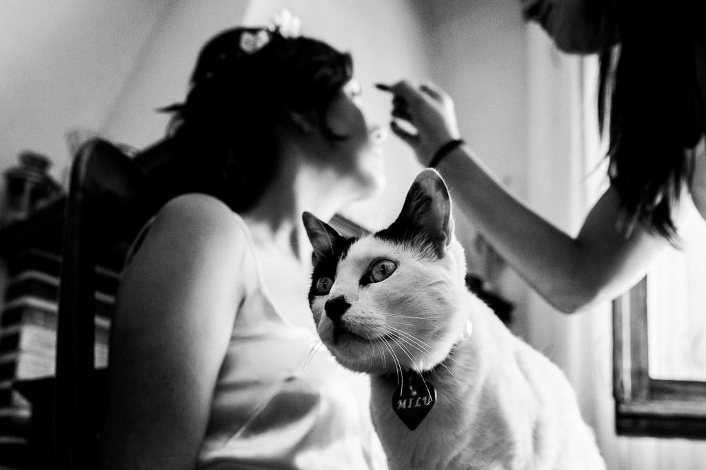 Novia maquillándose con gato por el medio